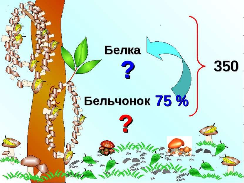 Белка Бельчонок