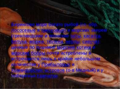 Берингово море богато рыбой (гл. обр. лососевые и тресковые) и морских зверем...