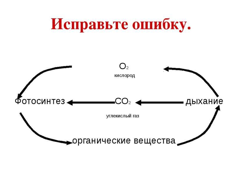 Исправьте ошибку. О2 кислород Фотосинтез СО2 дыхание углекислый газ органичес...