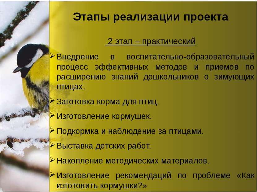 Этапы реализации проекта Внедрение в воспитательно-образовательный процесс эф...
