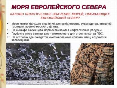 МОРЯ ЕВРОПЕЙСКОГО СЕВЕРА Моря имеют большое значение для рыболовства, судоход...