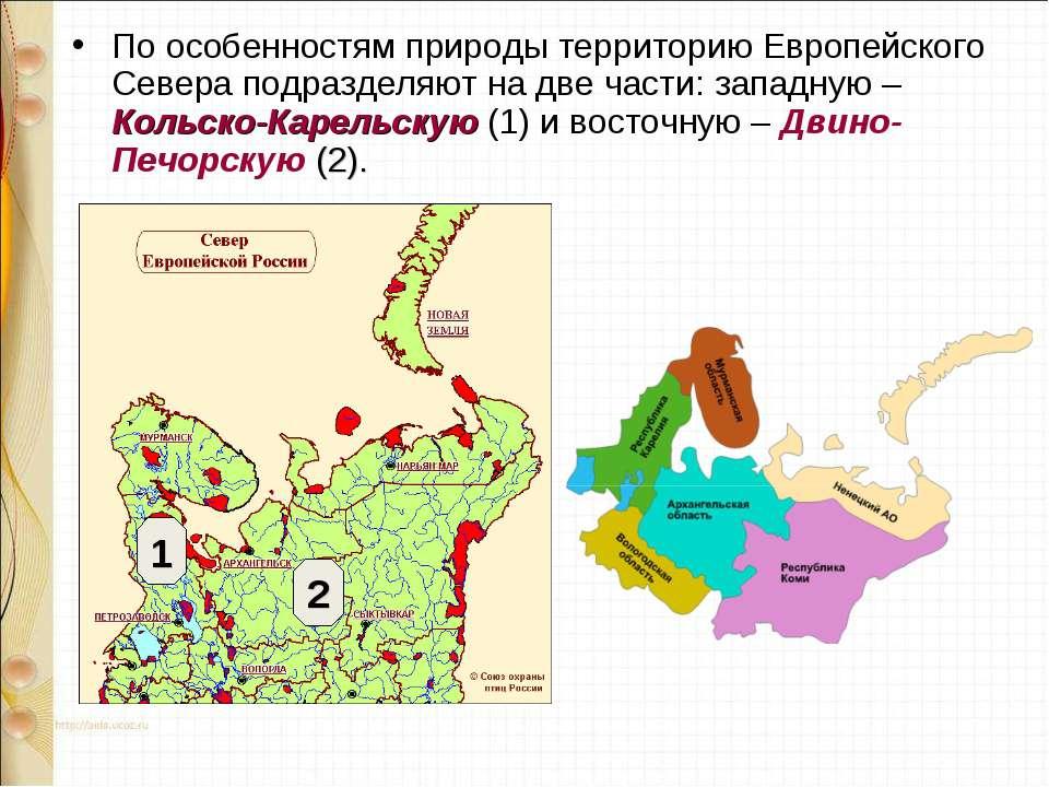 По особенностям природы территорию Европейского Севера подразделяют на две ча...