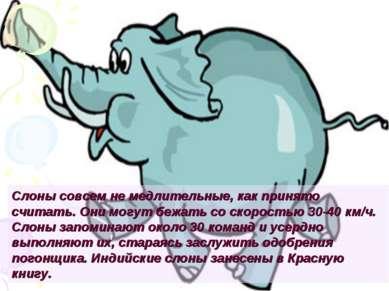 Слоны совсем не медлительные, как принято считать. Они могут бежать со скорос...