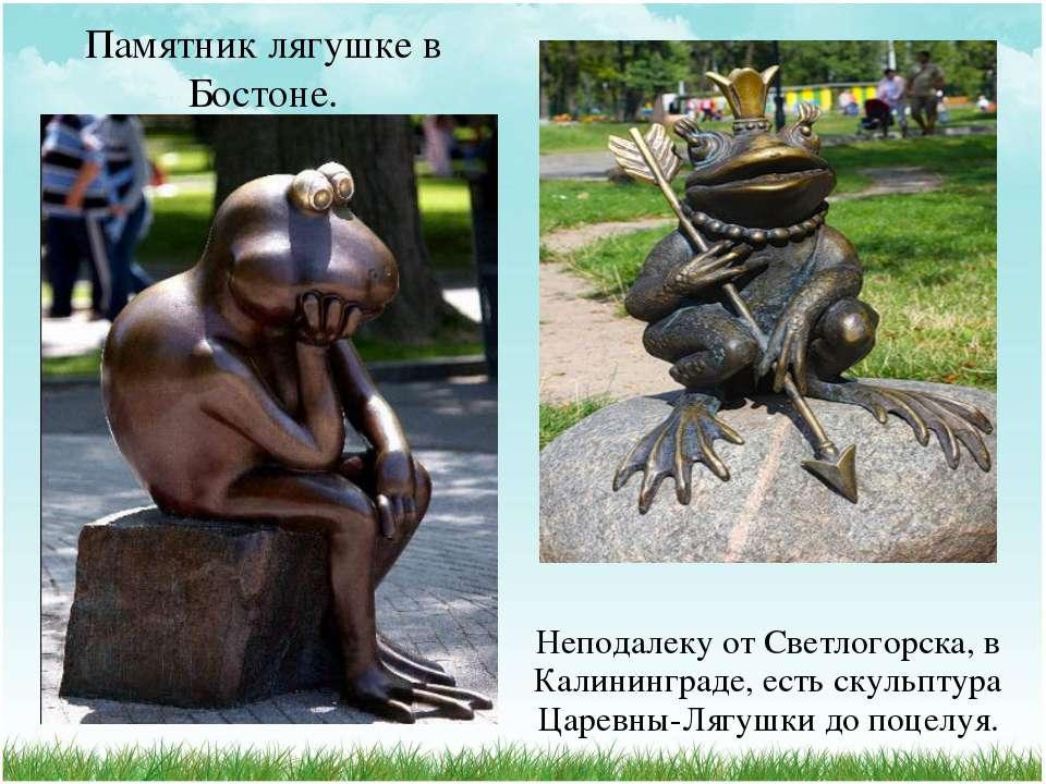 Памятник лягушке в Бостоне. Неподалеку от Светлогорска, в Калининграде, есть ...