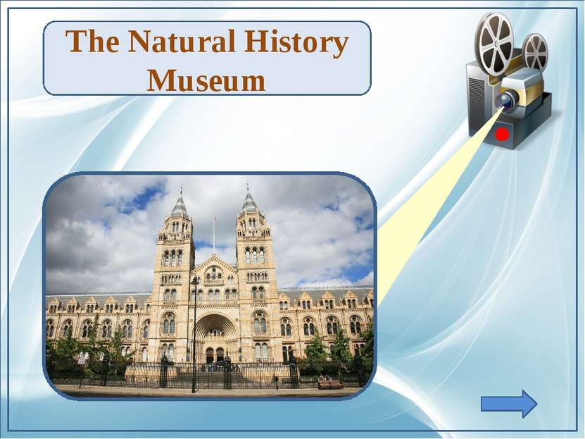 TheNatural History Museum