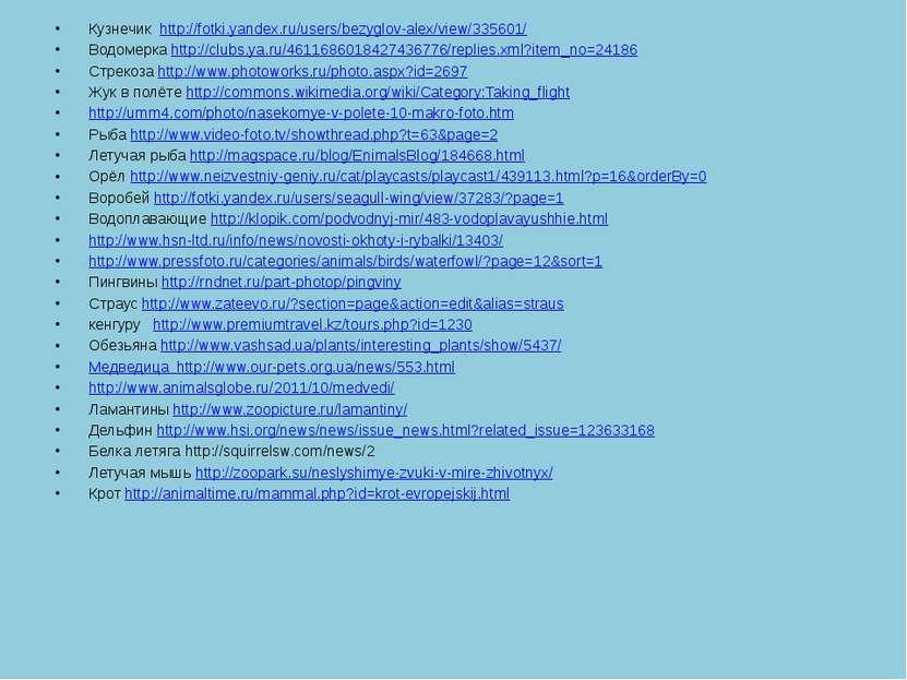 Кузнечик http://fotki.yandex.ru/users/bezyglov-alex/view/335601/ Водомерка ht...