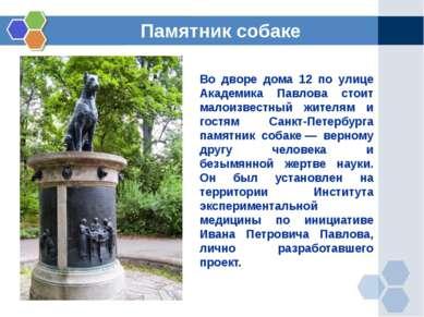 Во дворе дома 12 по улице Академика Павлова стоит малоизвестный жителям и гос...