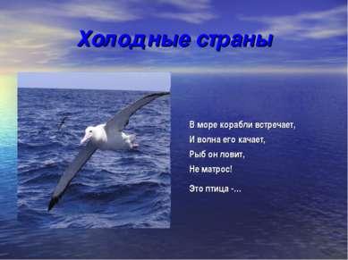 Холодные страны В море корабли встречает, И волна его качает, Рыб он ловит, Н...