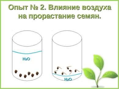 Опыт № 2. Влияние воздуха на прорастание семян. Н2О Н2О