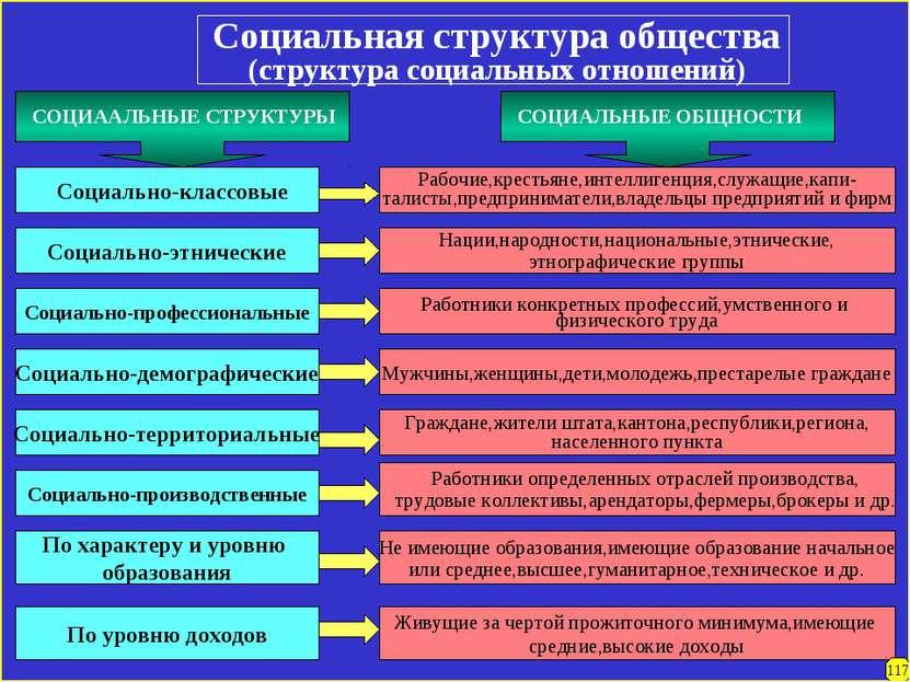 Социальная структура общества (структура социальных отношений) Социально-этни...