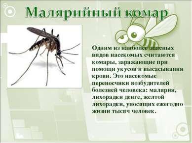Одним из наиболее опасных видов насекомых считаются комары, заражающие при по...