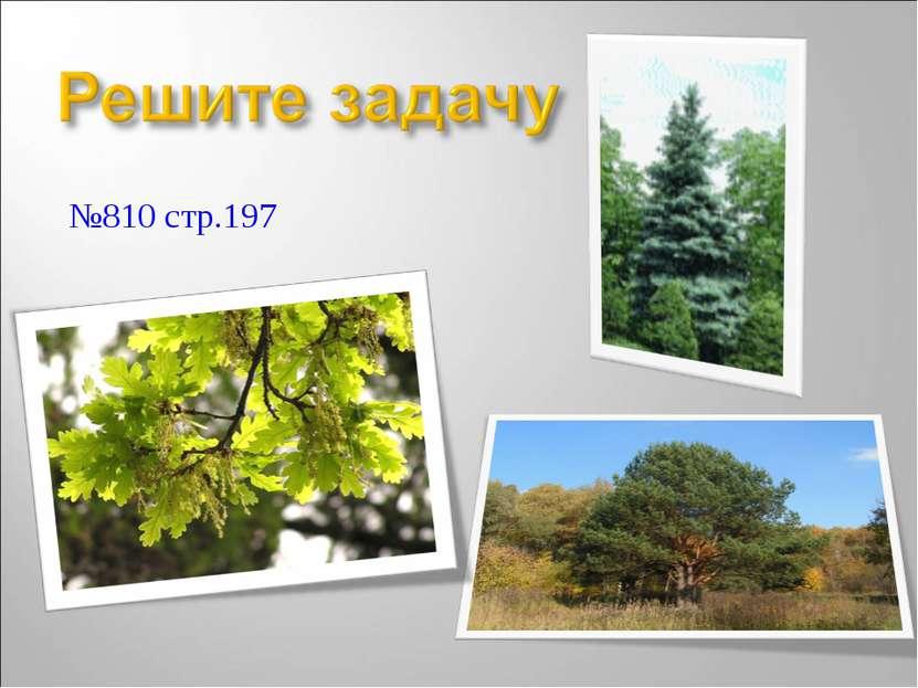 №810 стр.197