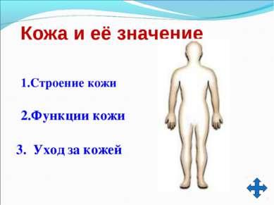Кожа и её значение 1.Строение кожи 3. Уход за кожей 2.Функции кожи