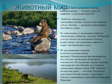6. Животный мир На территории заповедника обитают млекопитающие— 52 вида, пт...