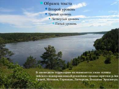 В заповедную территорию вклиниваются узкие заливы Зейского водохранилища.Круп...