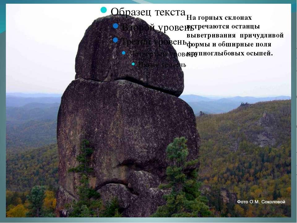 На горных склонах встречаются останцы выветривания причудливой формы и обширн...