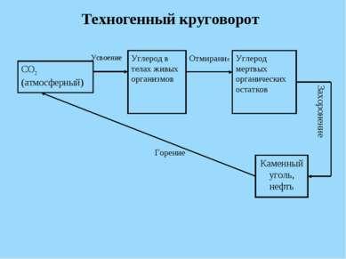 Техногенный круговорот