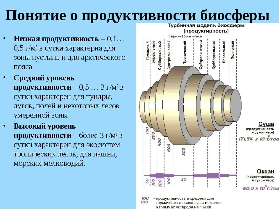 Понятие о продуктивности биосферы Низкая продуктивность – 0,1…0,5 г/м2 в сутк...