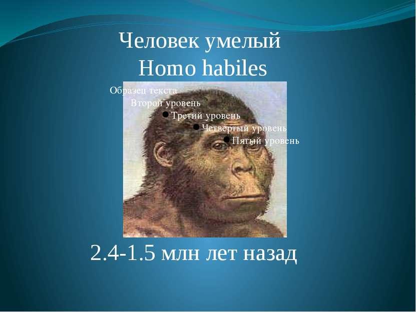 Человек умелый Homo habiles 2.4-1.5 млн лет назад Homo Habilis. Умели изготав...