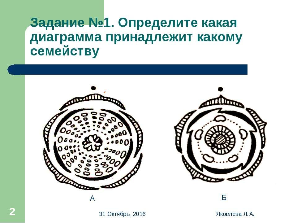 * Яковлева Л.А. * Задание №1. Определите какая диаграмма принадлежит какому с...