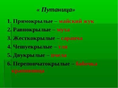« Путаница» 1. Прямокрылые – майский жук 2. Равнокрылые – муха 3. Жесткокрылы...