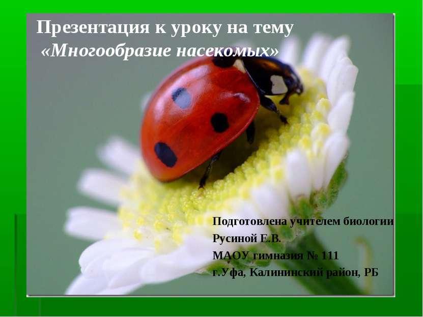 Презентация к уроку на тему «Многообразие насекомых» Подготовлена учителем би...