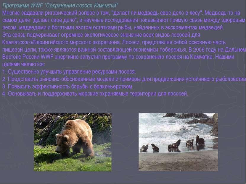 """Программа WWF """"Сохранение лосося Камчатки"""" Многие задавали риторический вопро..."""