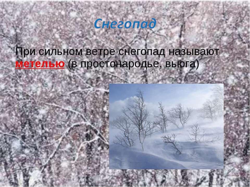 При сильном ветре снегопад называют метелью (в простонародье, вьюга)