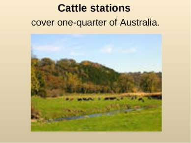 Cattle stations cover one-quarter of Australia.
