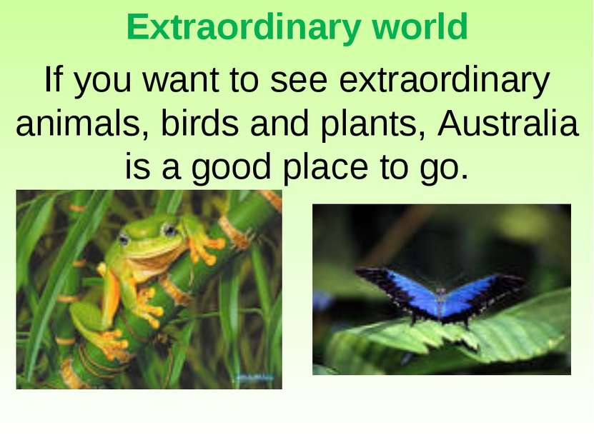Extraordinary world If you want to see extraordinary animals, birds and plant...