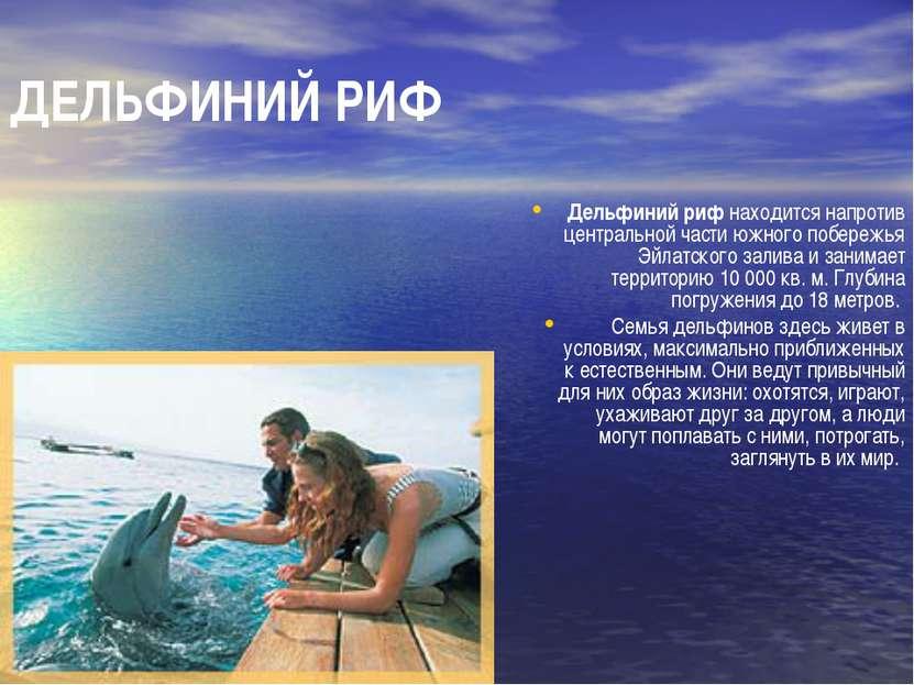 ДЕЛЬФИНИЙ РИФ Дельфиний риф находится напротив центральной части южного побер...