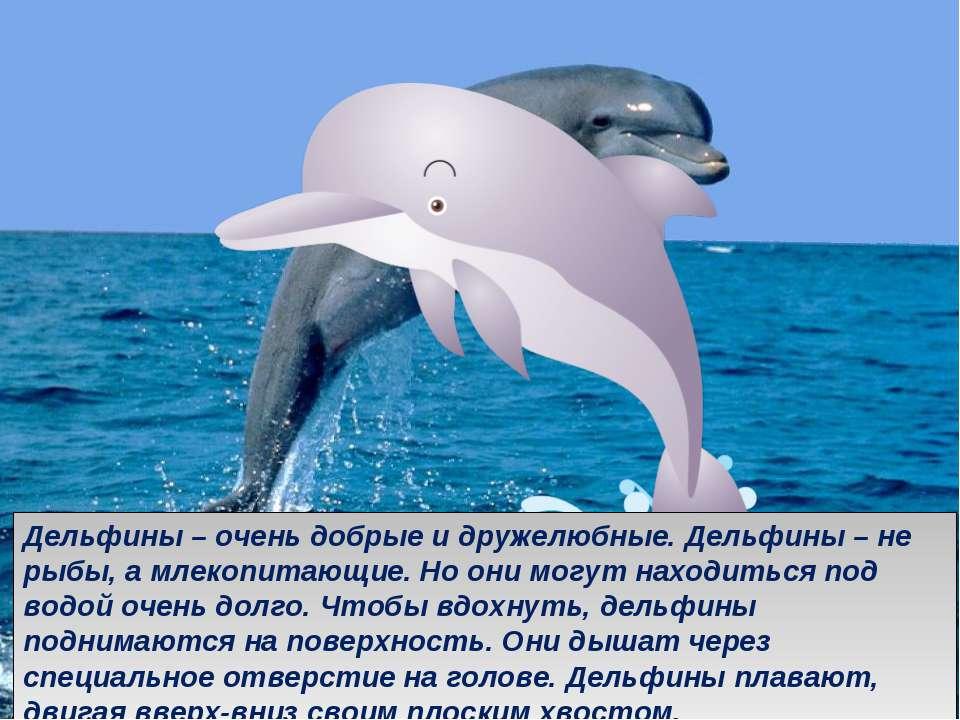 . Дельфины – очень добрые и дружелюбные. Дельфины – не рыбы, а млекопитающие....
