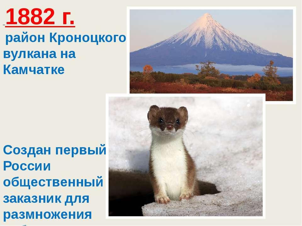 1882 г. район Кроноцкого вулкана на Камчатке Создан первый в России общест...