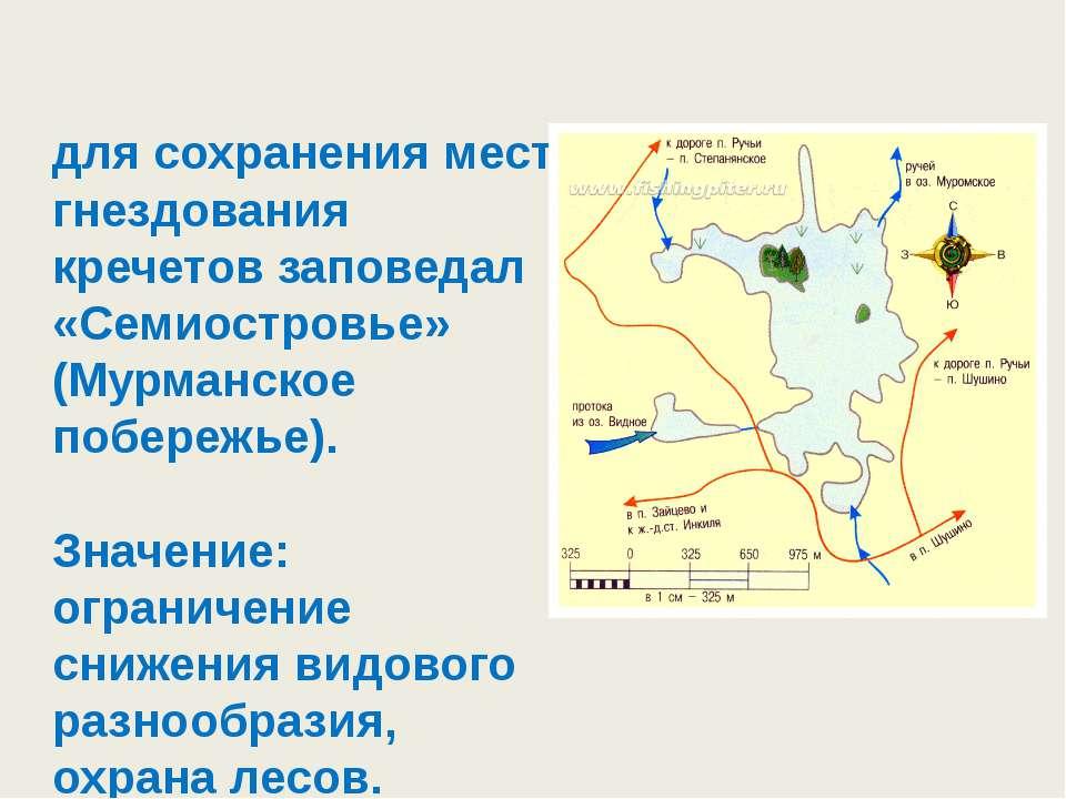 для сохранения мест гнездования кречетов заповедал «Семиостровье» (Мурманское...