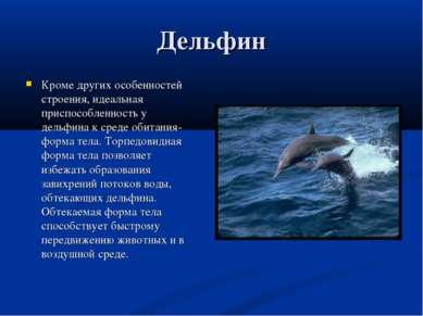 Дельфин Кроме других особенностей строения, идеальная приспособленность у дел...