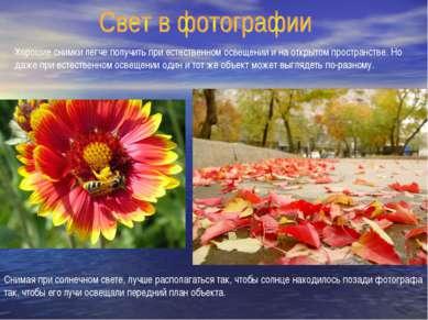 Хорошие снимки легче получить при естественном освещении и на открытом простр...