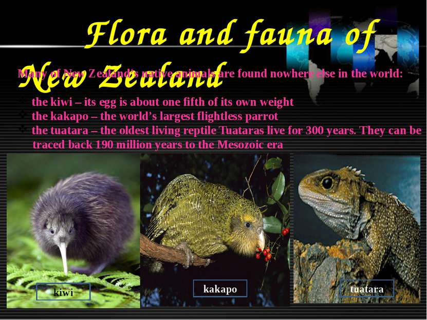 Flora and fauna of New Zealand Many of New Zealand's native animals are found...
