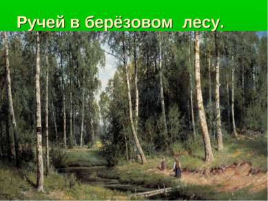 Ручей в берёзовом лесу.