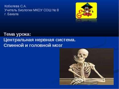 Кобелева С.А. Учитель биологии МКОУ СОШ № 8 г. Бакала Тема урока: Центральная...