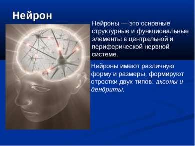 Нейрон Нейроны — это основные структурные и функциональные элементы в централ...