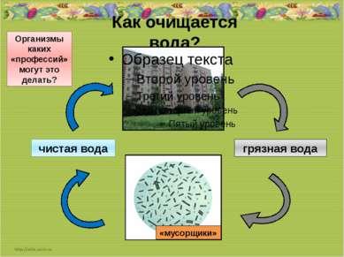 Как очищается вода? грязная вода чистая вода Организмы каких «профессий» могу...