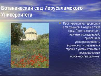Ботанический сад Иерусалимского Университета Простирается на территории в 13 ...