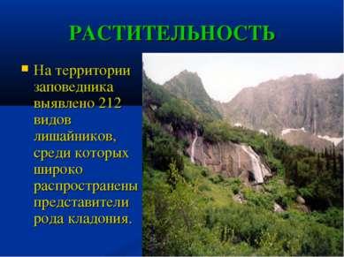 РАСТИТЕЛЬНОСТЬ На территории заповедника выявлено 212 видов лишайников, среди...