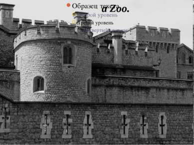 a Zoo.
