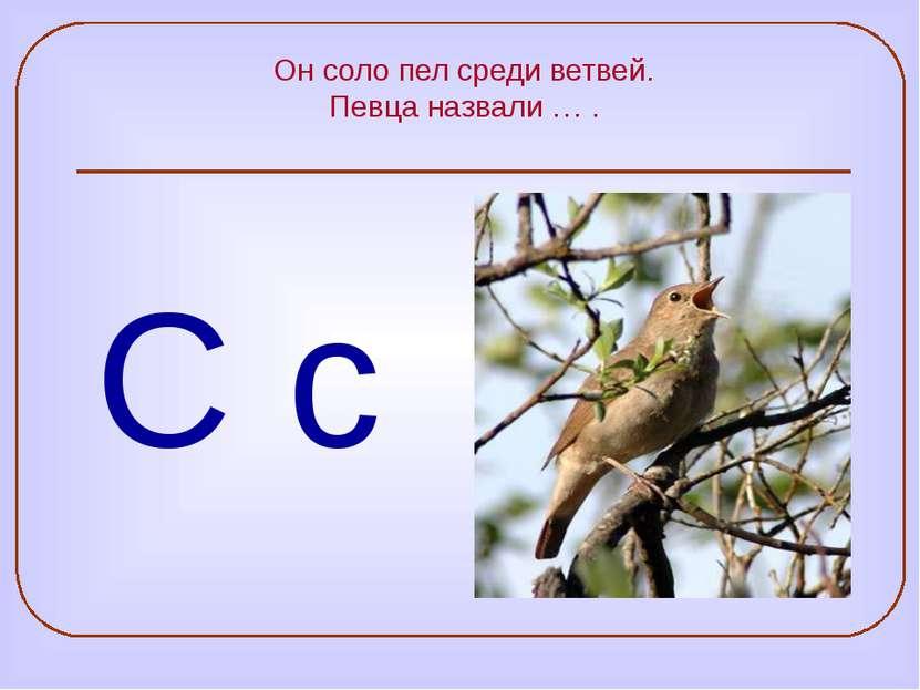Он соло пел среди ветвей. Певца назвали … . С с