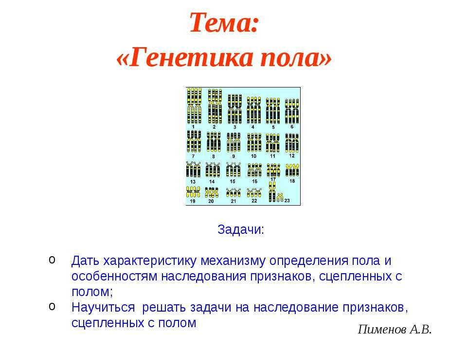Тема: «Генетика пола» Пименов А.В. Задачи: Дать характеристику механизму опре...