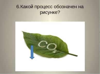 6.Какой процесс обозначен на рисунке?