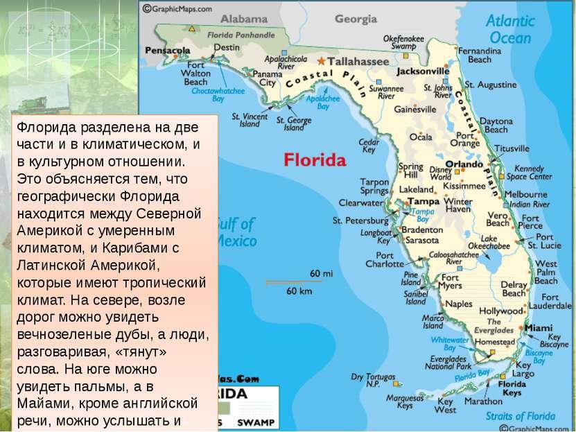 Флорида разделена на две части и в климатическом, и в культурном отношении. Э...