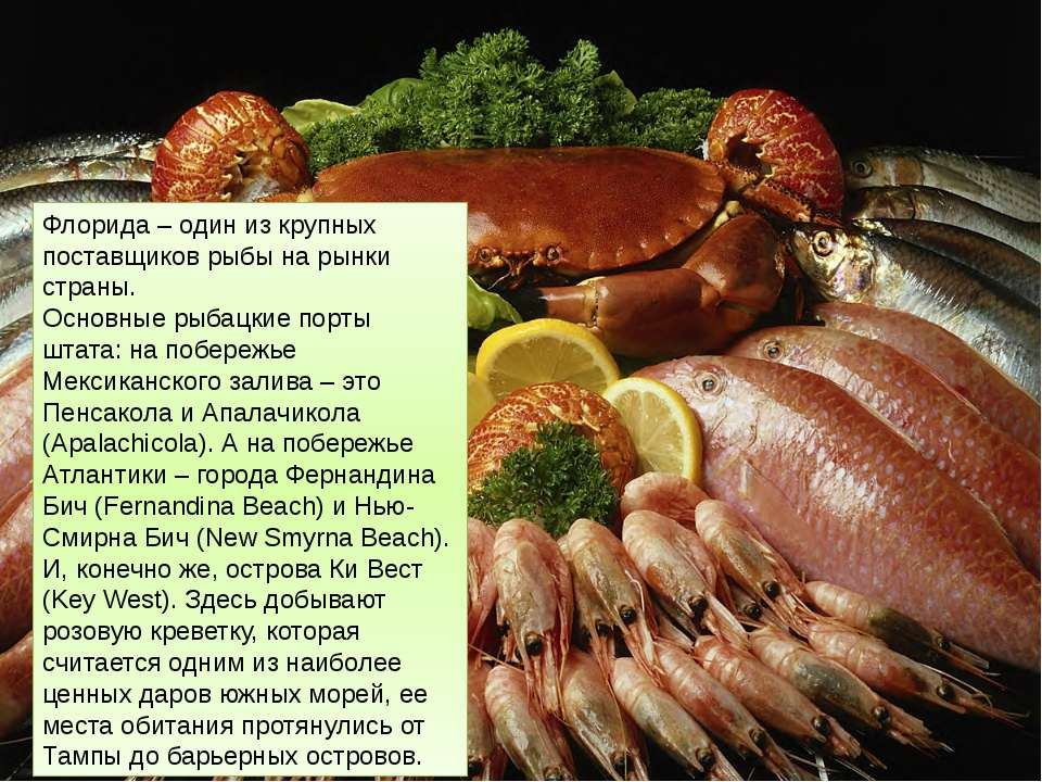 Флорида – один из крупных поставщиков рыбы на рынки страны. Основные рыбацкие...