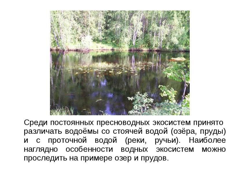 Среди постоянных пресноводных экосистем принято различать водоёмы со стоячей ...